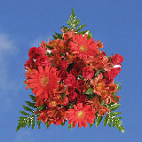 2 for 1 Red Passion Bouquets