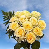 12 Dozen Assorted Colors of Roses with Fillers