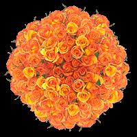 200 Stems of Dark Orange, Amber Roses For Delivery to Marietta, Georgia