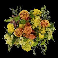 Flower Delivery to Starkville, Mississippi