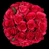 100 Stems of Hot Pink Roses For Delivery to Ogden, Utah