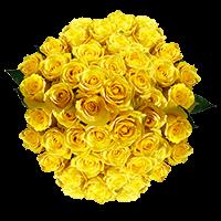 100 Stems of Yellow Bikini Roses For Delivery to Lebanon, Missouri