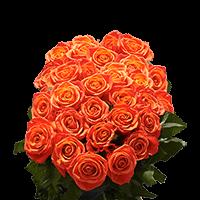 75 X Long Stems of Orange, Valentine's Day Roses For Delivery to Santa_Barbara, California
