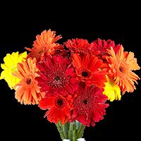 Flower Delivery to Hood_River, Oregon