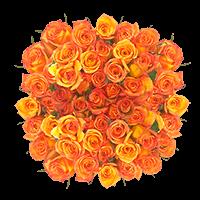 Flower Delivery to Jonesboro, Arkansas