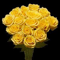 Flower Delivery to Williston, North_Dakota
