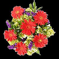 7 Passion Valentine's Day Bouquets For Delivery to Pueblo, Colorado