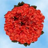 200 Assorted Orange Roses                                                              For Delivery to Oak_Harbor, Washington