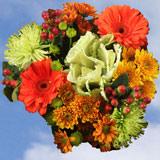 Flower Delivery to Spokane, Washington