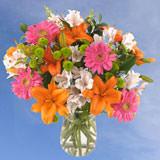Flower Delivery to Durango, Colorado