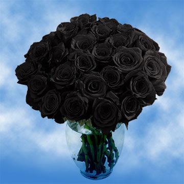 Black Roses Globalrose