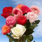 Garden Wedding Roses