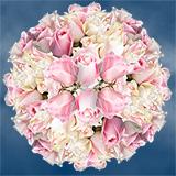 Gorgeous Light Soft Pink Cut Roses
