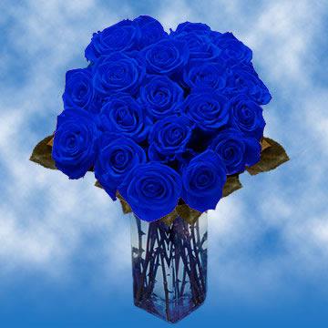 Online Blue Roses For Sale