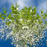 Premium Flower Fillers