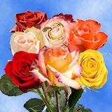 Premium Wedding Roses