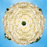 White Online Roses