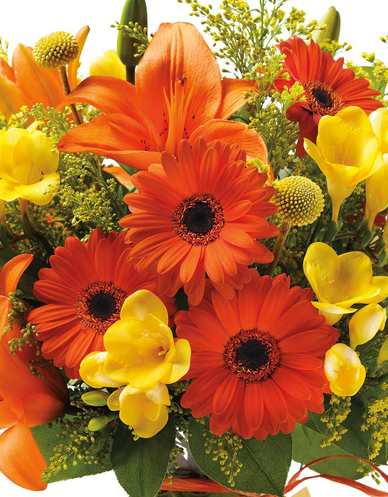 Flowers Roses Wedding Wholesale line Send Birthday Bulk Cheap Glob